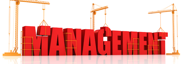 The Management System – Form, Fit, and Function