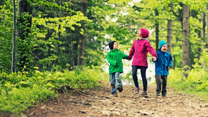Break Out of Your Teaching Rut – Go Take a Hike!  (Psalm 91:11-12)