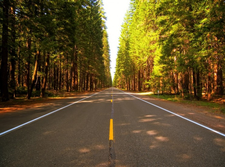 5 Things Pastors Need to Consider When Navigating Their Future