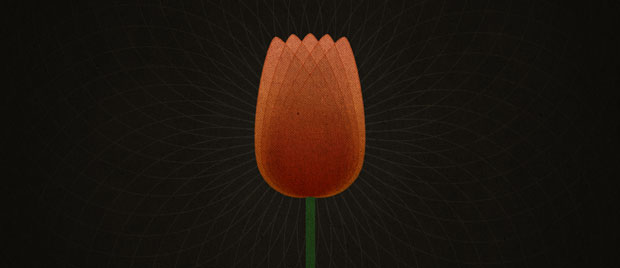 TULIP and Reformed Theology: Perseverance of the Saints